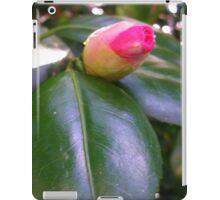 Camellia Bud iPad Case/Skin
