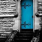 The Blue Door (sc) by Werner Padarin