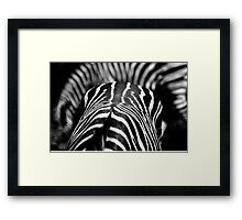 Abstract Zebras Framed Print