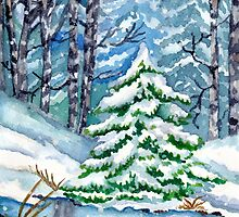 Winter Spruce Tree by Lallinda
