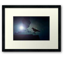 Black raven sitting on the ledge in the moonlight Framed Print
