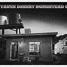 Twin Tanks Desert Homestead Cabin by Peter B