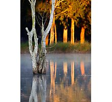 Morning Reflections Photographic Print