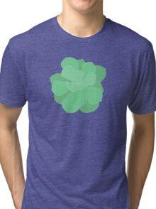 Imbricata Echeveria - Succulent Tri-blend T-Shirt