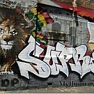 Street Art Melbourne #107 by bekyimage