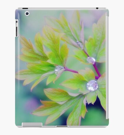 Sparkle iPad Case/Skin