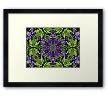 Beauty in purple and green Framed Print