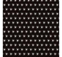 Dandelion Fluff in Black and White Photographic Print