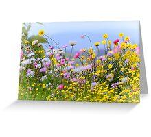Wildflowers galore Greeting Card