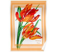 Birthday Wishes - Parrot Tulips Poster