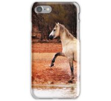 the Silver Brumby iPhone Case/Skin