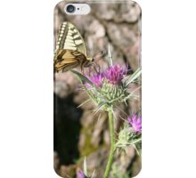 Scarce Swallowtail Butterfly and Thistle iPhone Case/Skin