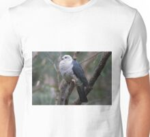 Feather Fluffing Unisex T-Shirt