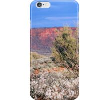Kings Creek Station iPhone Case/Skin
