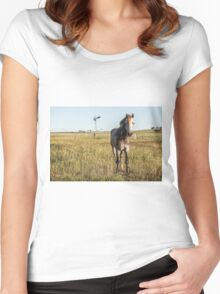 Horse in the countryside  Women's Fitted Scoop T-Shirt