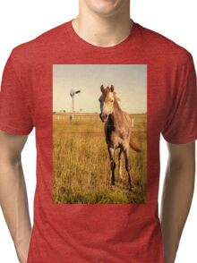Horse in the countryside  Tri-blend T-Shirt