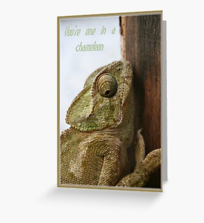 You're One In A Chameleon Greeting Card