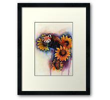 Red Panda with Sunflowers Framed Print