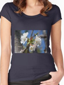 Cherry Blossom In Spring Sunlight Women's Fitted Scoop T-Shirt