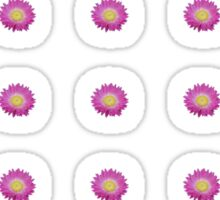 Daisy - Pink and Yellow Sticker