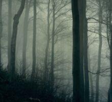 Foggy dark forest with a black slope Sticker