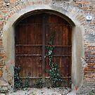 A Gate in Mantua, Italy by Igor Pozdnyakov