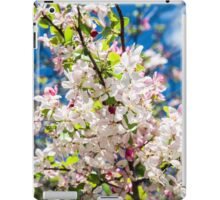 Cherry blossoms in spring iPad Case/Skin