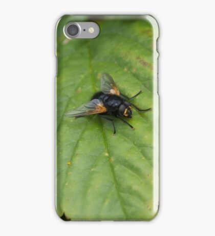 Must Fly! iPhone Case/Skin