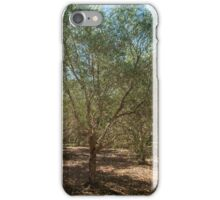 Summer in the Olives iPhone Case/Skin