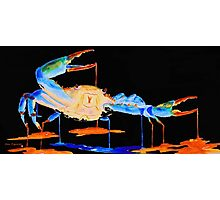 Blue Crab On Black Photographic Print
