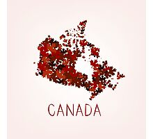 Maple Leafs Map of Canada Photographic Print