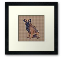 Border Terrier Dog On a Brown And Cream Background Framed Print