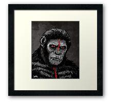 Caesar Framed Print