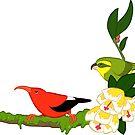 Hawaiian birds 4 - Parrotbill and iiwi by HenriekeG