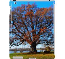 Shirley Plantation, Virginia  iPad Case/Skin
