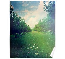Apple Orchard in Spring Poster