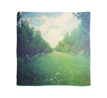Apple Orchard in Spring Scarf