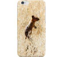 ground squirrel iPhone Case/Skin