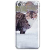 White Moustache Cat iPhone Case/Skin