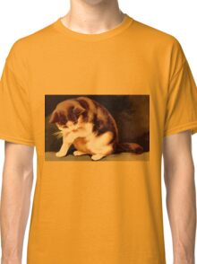 Brown and beige kitten painting Classic T-Shirt