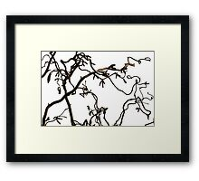 Twisted Nature Framed Print