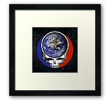 Earth Stealie Framed Print