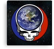 Earth Stealie Canvas Print