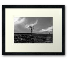 Zeitgefluester NO3 Framed Print