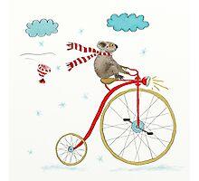 Koala Bear Riding Red Bike In Winter Photographic Print