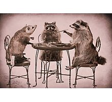 Two raccoons and opossum playing poker Photographic Print