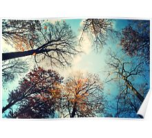 tree monsters from below Poster