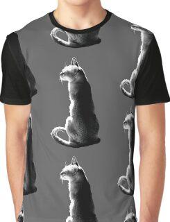 black&white singapura cat 2 Graphic T-Shirt