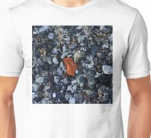 Gravel With Contrasting Stone Unisex T-Shirt