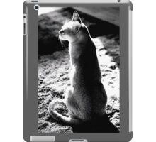 black&white singapura cat 1 iPad Case/Skin